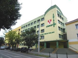 Starostwo Powiatowe główna siedziba, ul. Mickiewicza 46